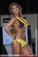 AccionCR-FinalPielDorada2013-16