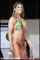 AccionCR-PielDorada2013-042