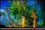 AccionCR-MadagascarLive-014
