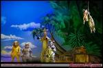 AccionCR-MadagascarLive-019