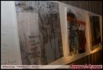 accioncr-arte-008